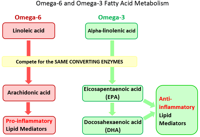 what happens if you have too much omega 3