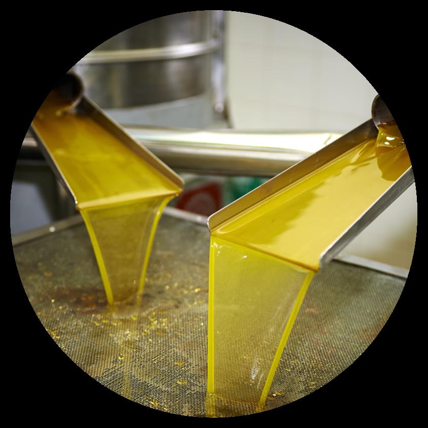 unrefined oils - cold pressing